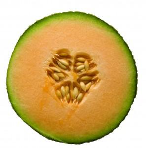 Cantaloupe, cross-section